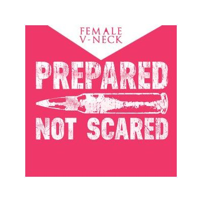Article 15 Prepared Not Scared Female V-Neck