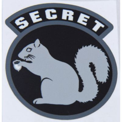 Secret Squirrel Decal